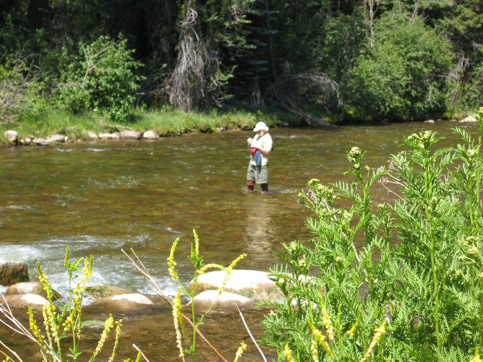 Aspen bob and arden travers and their travels for History of fly fishing