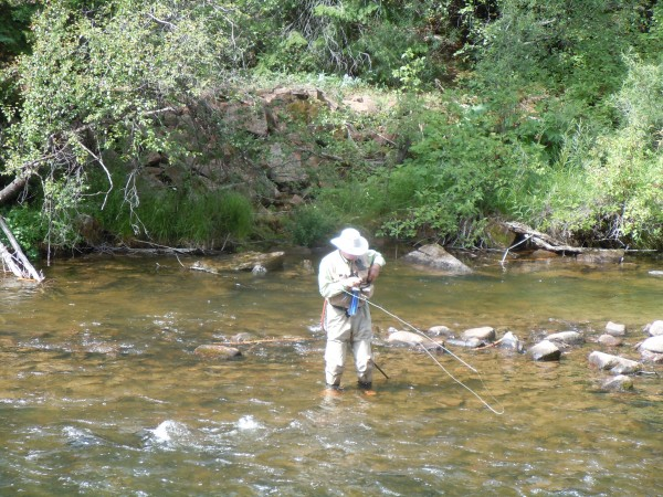 Fish roaring fork bob and arden travers and their travels for Best trout fishing in colorado